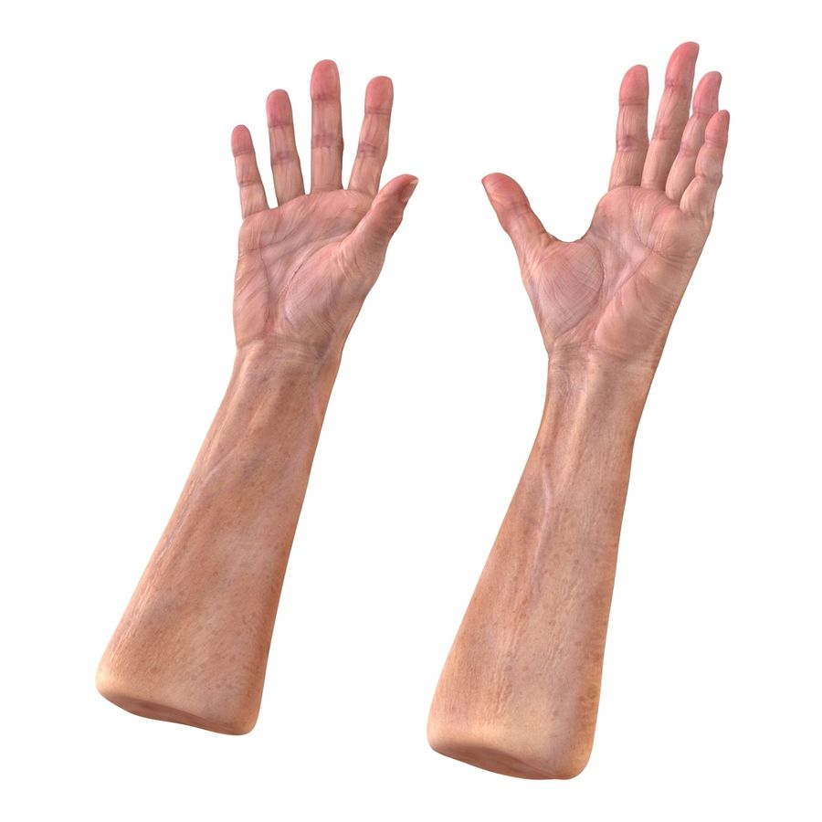 Old Man Hands 2 royalty-free 3d model - Preview no. 7