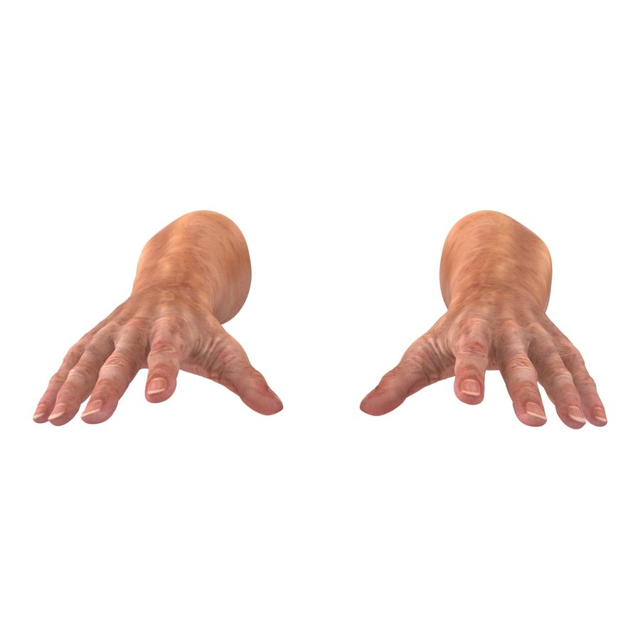 Old Man Hands 2 royalty-free 3d model - Preview no. 9