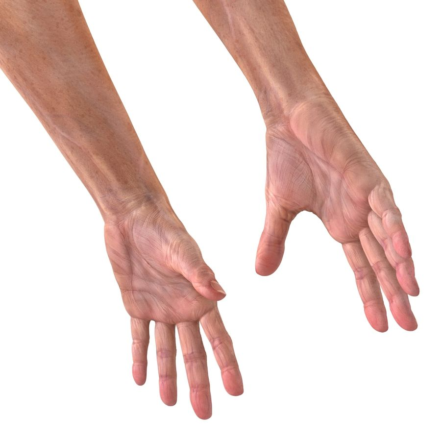 Old Man Hands 2 royalty-free 3d model - Preview no. 12