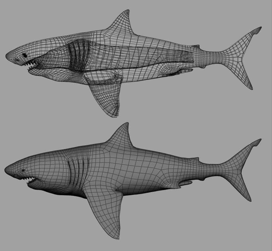 Grande squalo bianco royalty-free 3d model - Preview no. 19