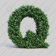 Buxus alphabet Q 3d model
