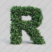 黄雀字母表R 3d model