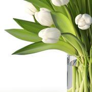 Tulipes 3d model