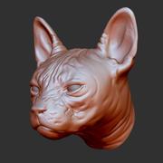 Cabeça de gato 3d model