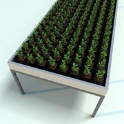 Plantor för plantor 3d model
