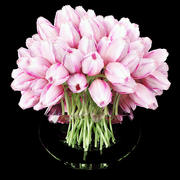 Çiçekler 3d model