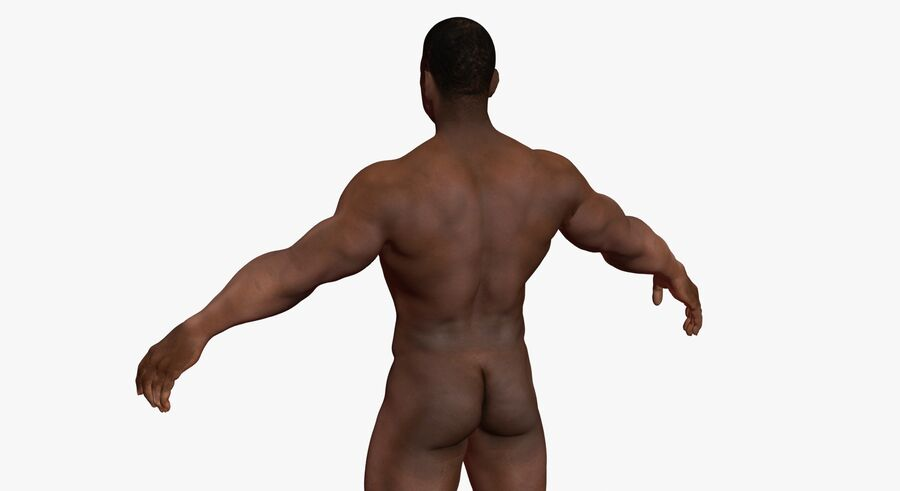 African American man med skelett 3DSmax royalty-free 3d model - Preview no. 10