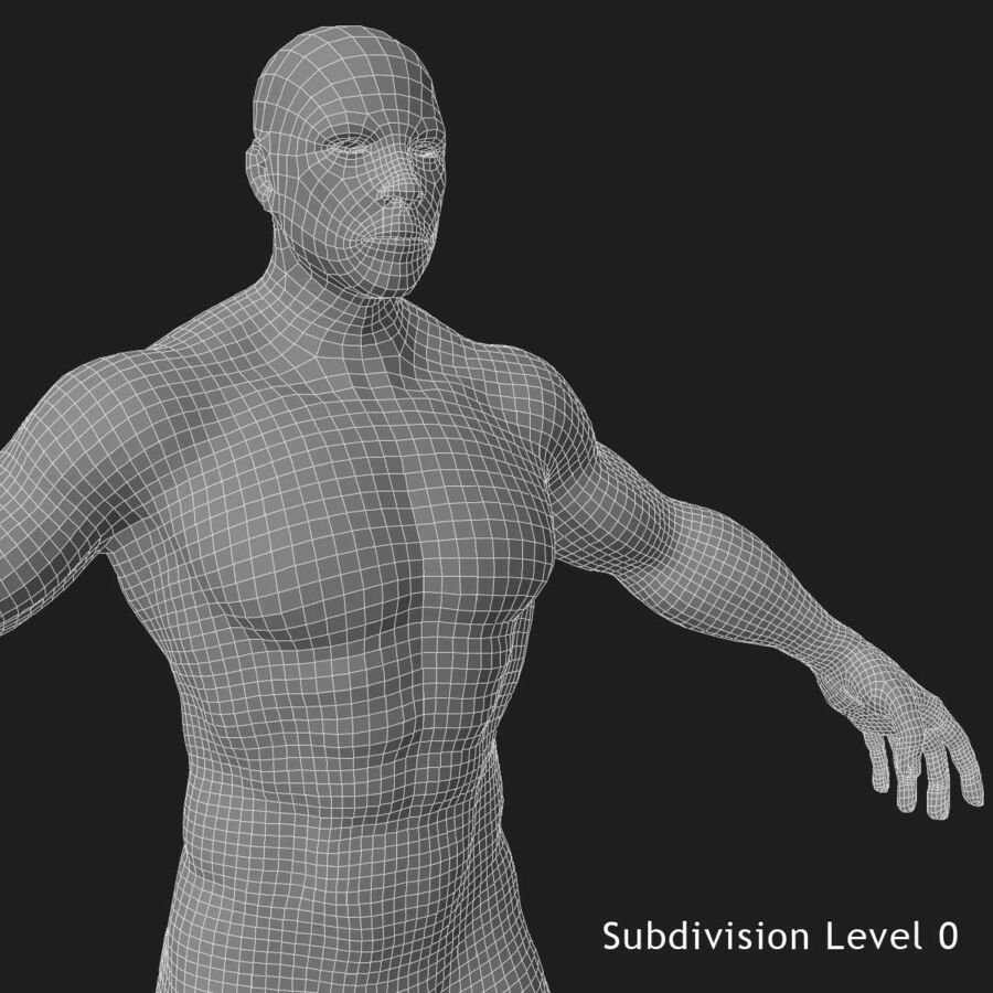 African American man med skelett 3DSmax royalty-free 3d model - Preview no. 26