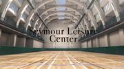 Seymour Leisure Centre London 3d model