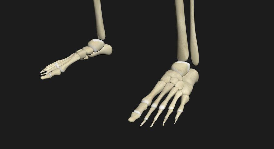 Man med skelett 3DSmax royalty-free 3d model - Preview no. 17