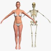 スケルトン3DSmaxの女性 3d model