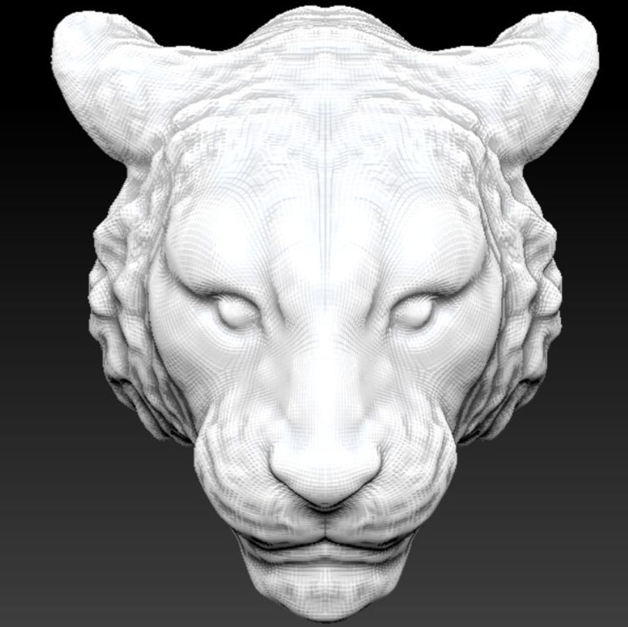 Голова сибирского тигра royalty-free 3d model - Preview no. 3