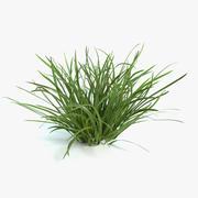 Drapeau herbe 3d model