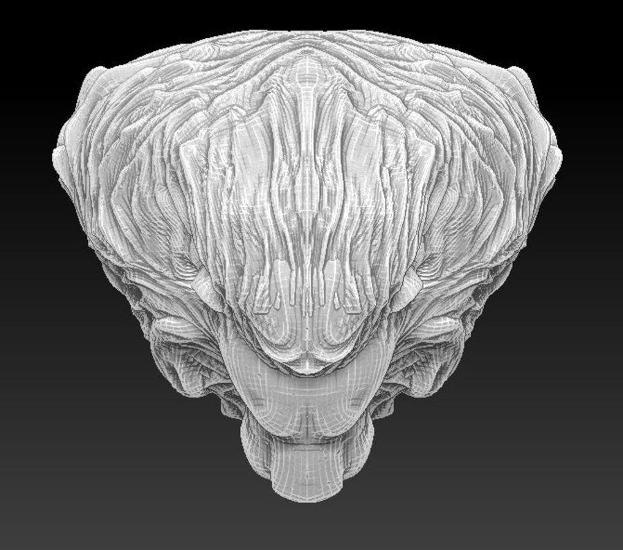 Lion head bust royalty-free 3d model - Preview no. 4