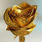 Golden Rose 3d model