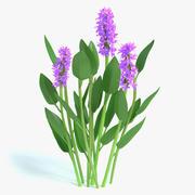 Purple Pickerel Rush Flowers 3d model