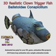 "3D Lowpoly 현실적인 방아쇠 물고기 - 딱딱한 생기있는 ""Balistoides Conspicillum"" 3d model"