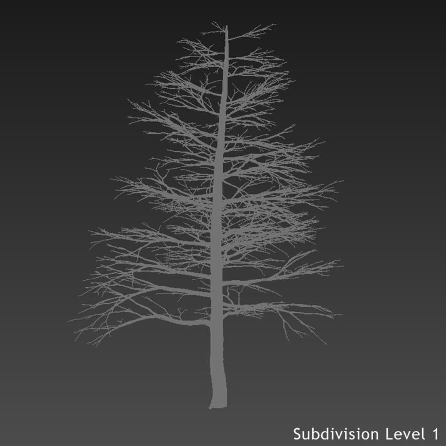 3d Träd Gratis Vray