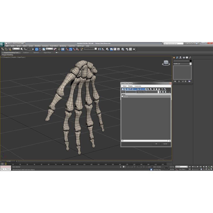 Human Hand Bones royalty-free 3d model - Preview no. 17