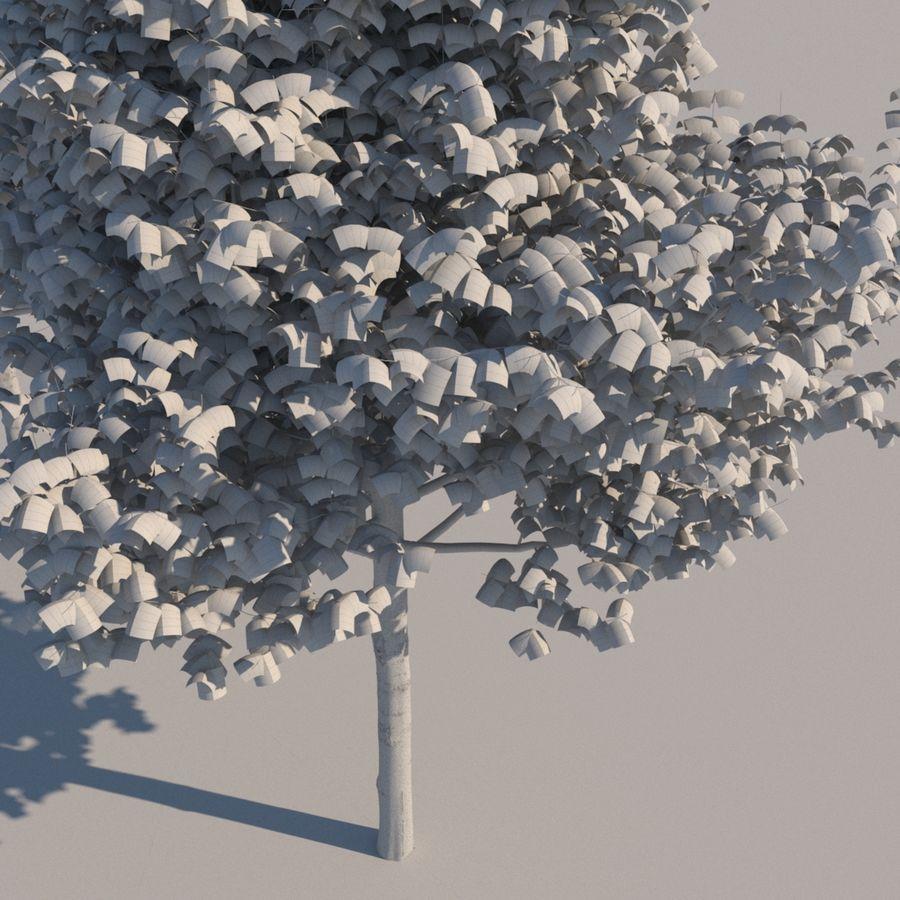 Vero albero architettonico royalty-free 3d model - Preview no. 9