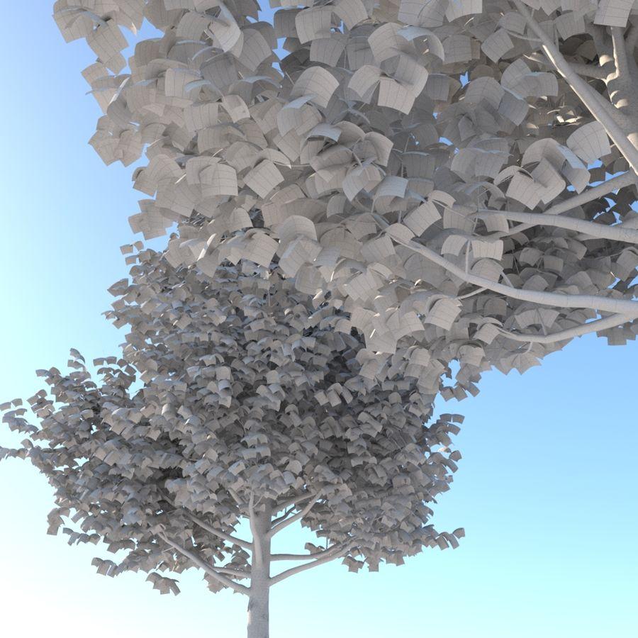 Vero albero architettonico royalty-free 3d model - Preview no. 10