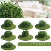 Seven Bushes 3d model