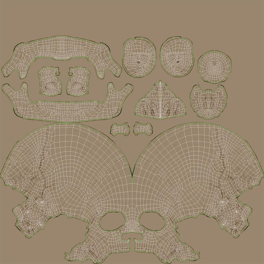 Żeńska Ludzka Czaszka royalty-free 3d model - Preview no. 17
