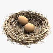 Nest + 2 Eggs 3d model