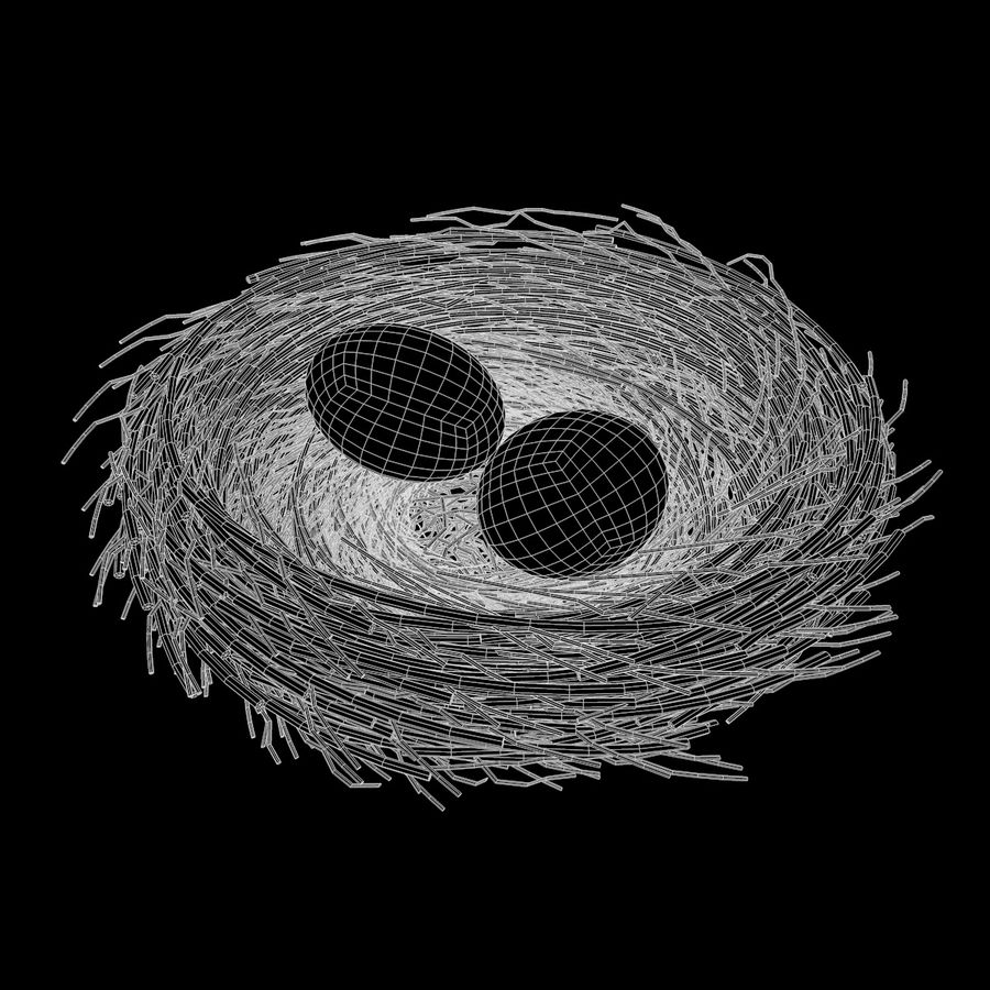 Nest + 2 Eggs royalty-free 3d model - Preview no. 10