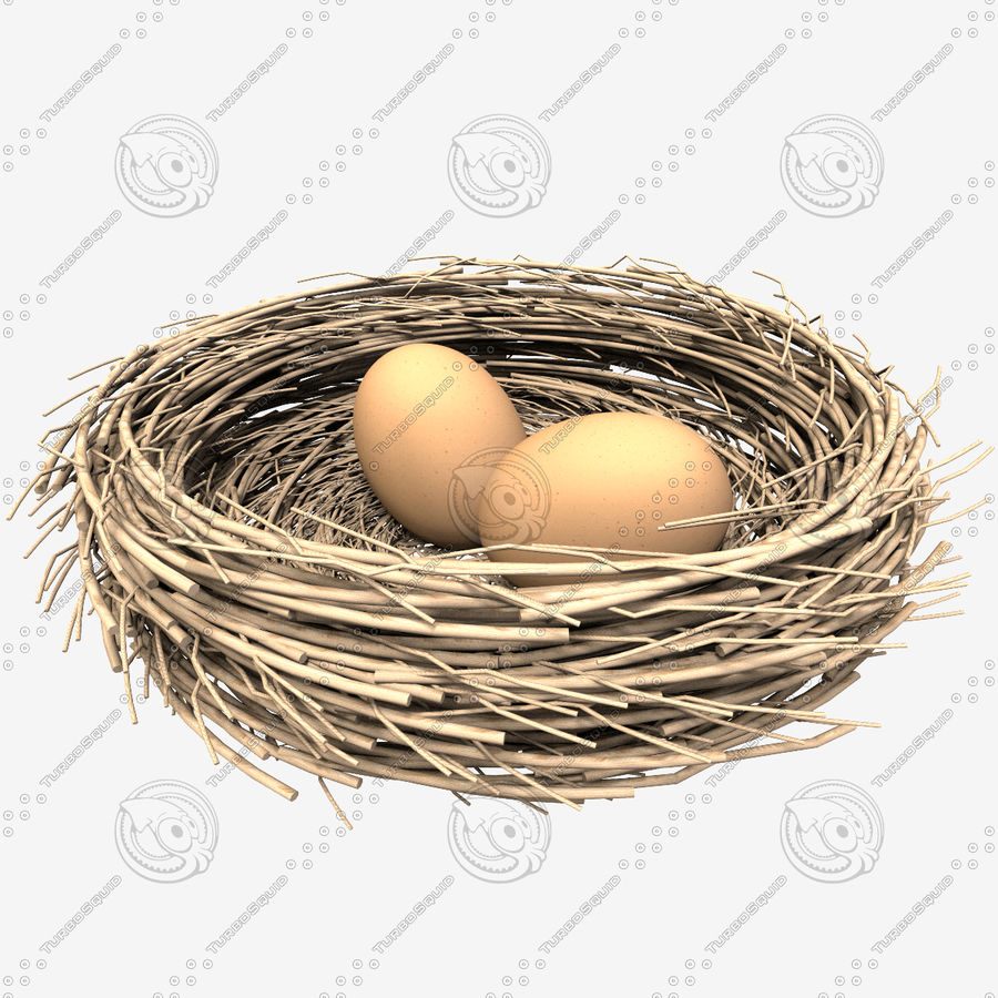 Nest + 2 Eggs royalty-free 3d model - Preview no. 7