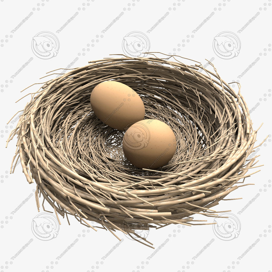 Nest + 2 Eggs royalty-free 3d model - Preview no. 5