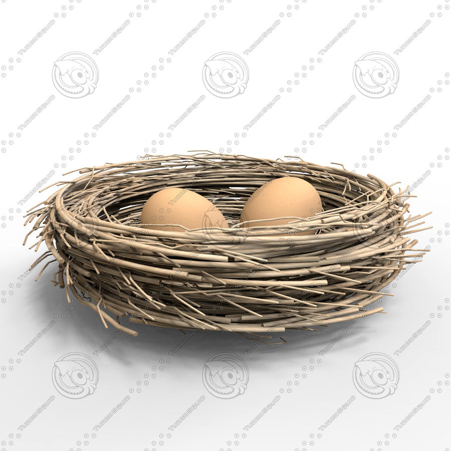 Nest + 2 Eggs royalty-free 3d model - Preview no. 2