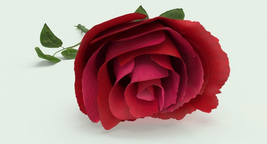 Poniendo rosa royalty-free modelo 3d - Preview no. 11