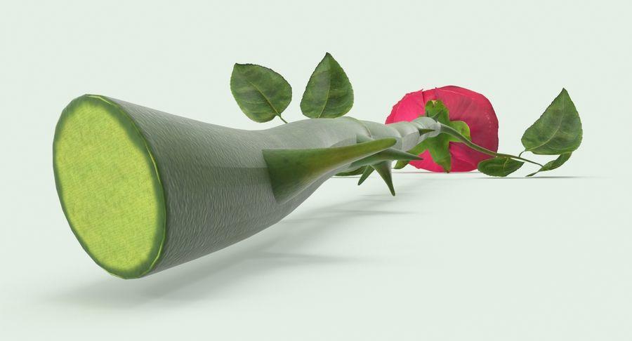 Poniendo rosa royalty-free modelo 3d - Preview no. 8