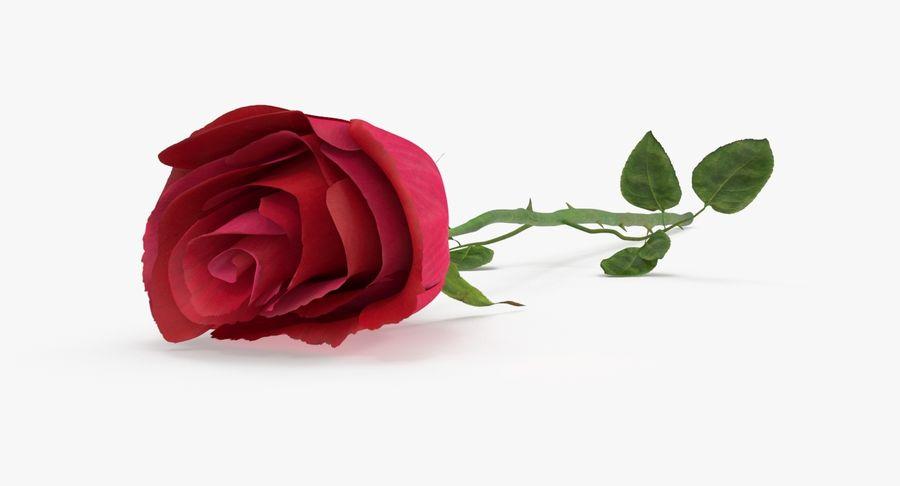 Poniendo rosa royalty-free modelo 3d - Preview no. 2