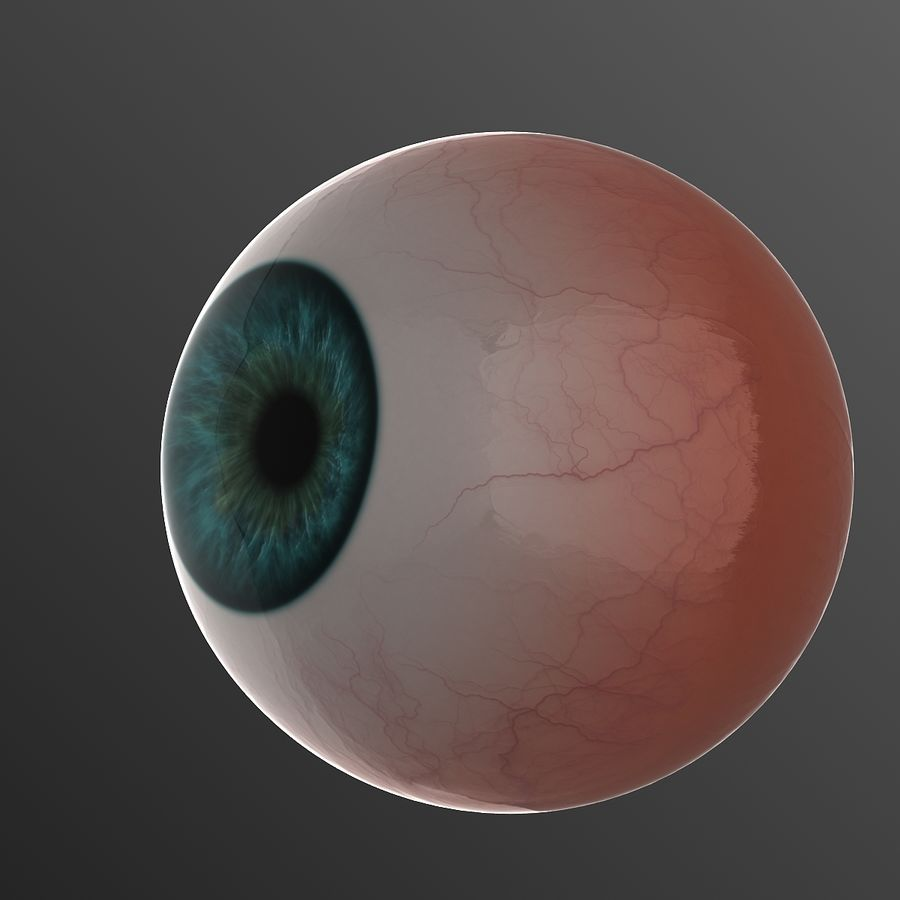 Human Eye royalty-free 3d model - Preview no. 1