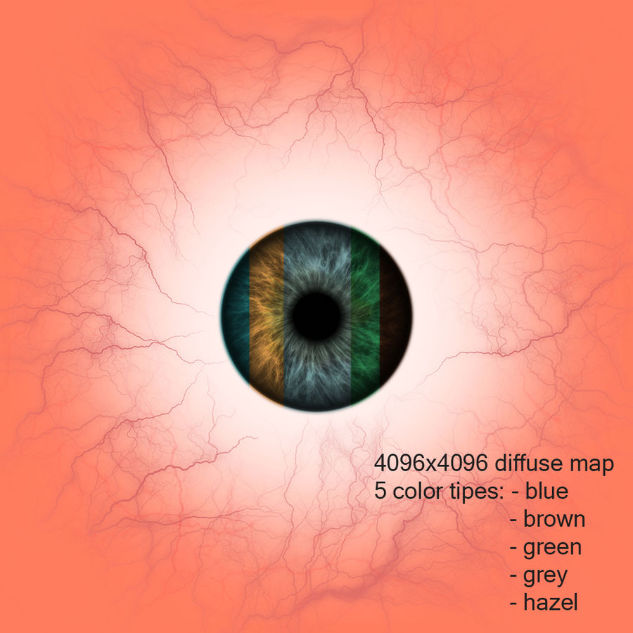 Human Eye royalty-free 3d model - Preview no. 8