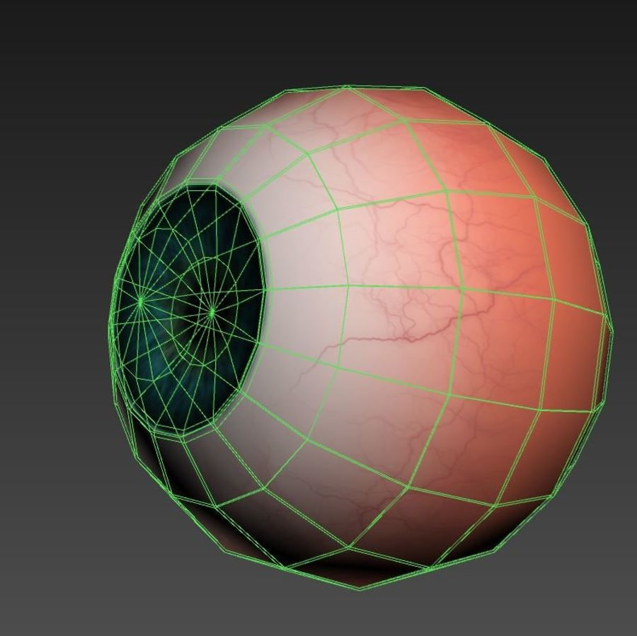 Human Eye royalty-free 3d model - Preview no. 5