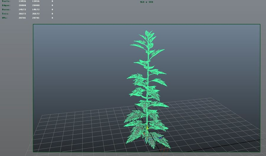 Herb Plant royalty-free 3d model - Preview no. 4