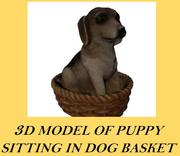 Realistic Puppy Sitting in Basket 3d model