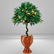 트위스트 트렁크 오렌지 나무 3d model