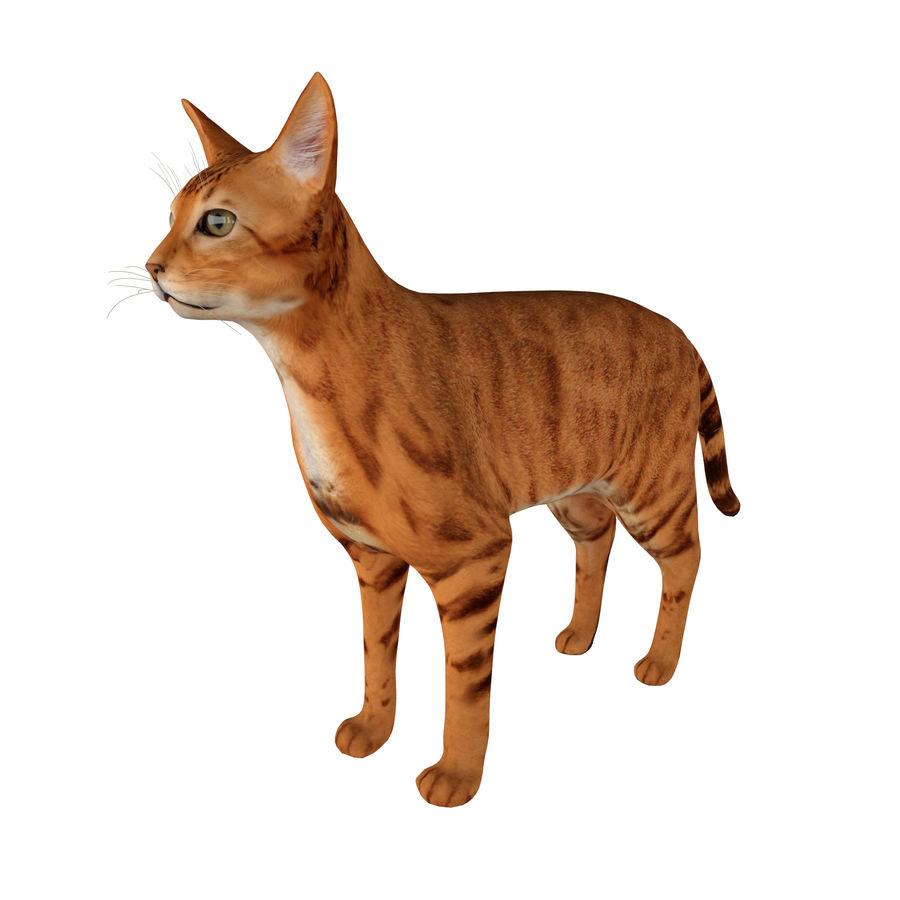 猫 royalty-free 3d model - Preview no. 2