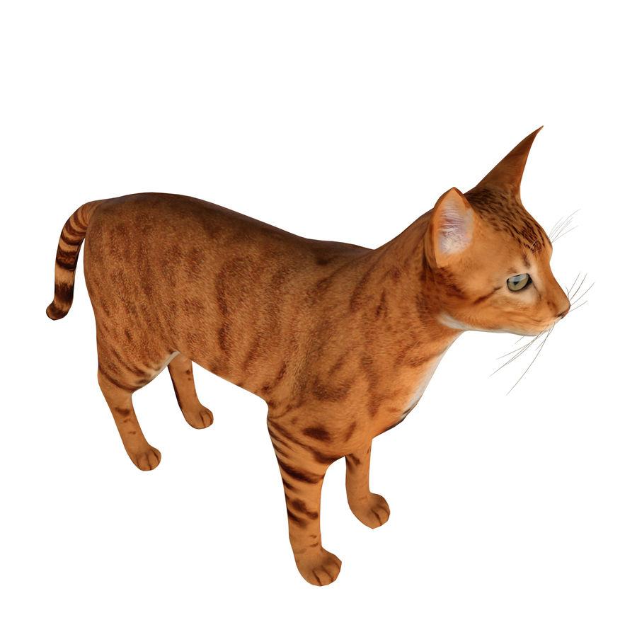 猫 royalty-free 3d model - Preview no. 4