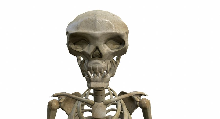 Skelett royalty-free 3d model - Preview no. 10