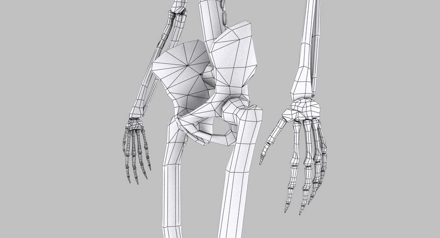 Skelet royalty-free 3d model - Preview no. 24