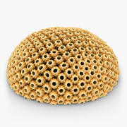 Astreopora Coral Yellow 3d model