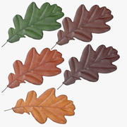 Oak Leaf 02 Collection 3d model