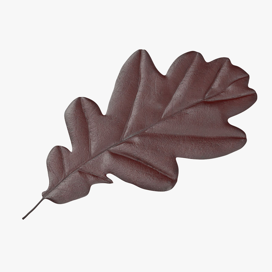 Oak Leaf 02 Collection royalty-free 3d model - Preview no. 5