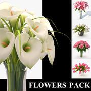 Blumenpackung Band 1 3d model