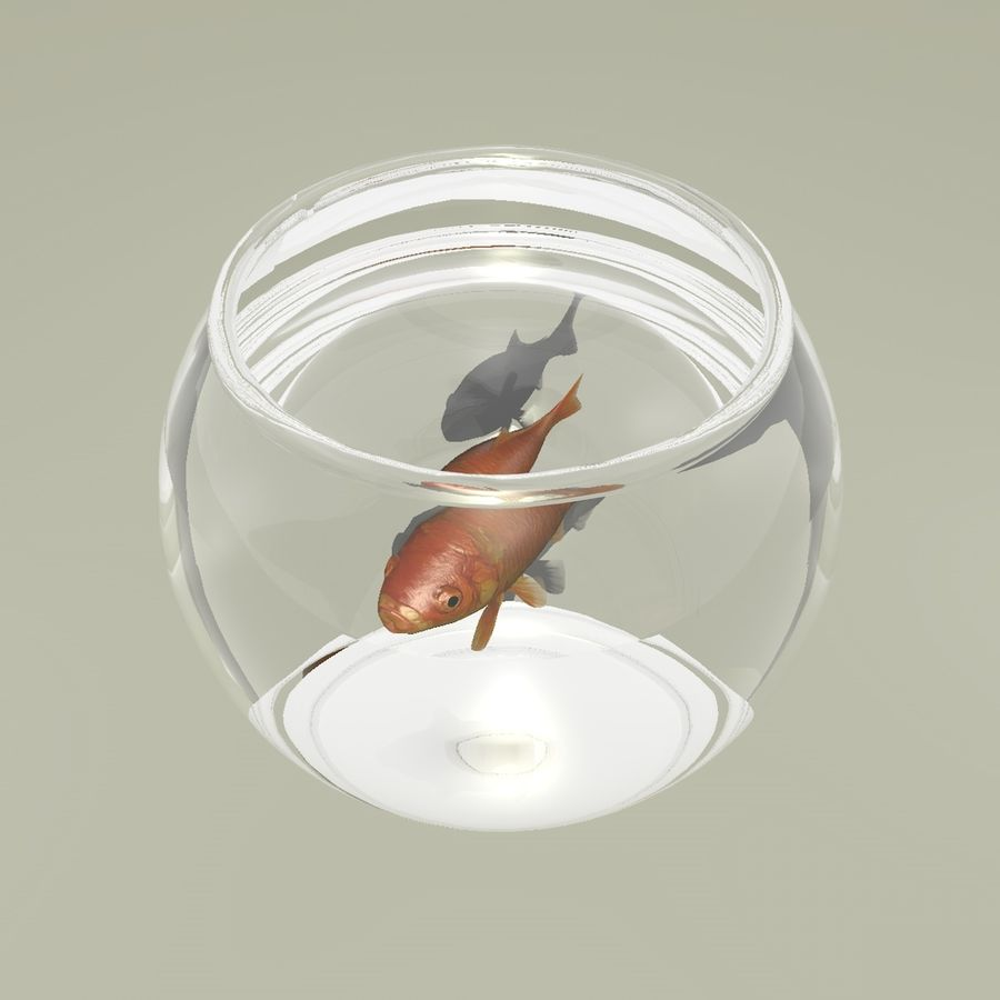 Peixe dourado animado em um aquário royalty-free 3d model - Preview no. 4